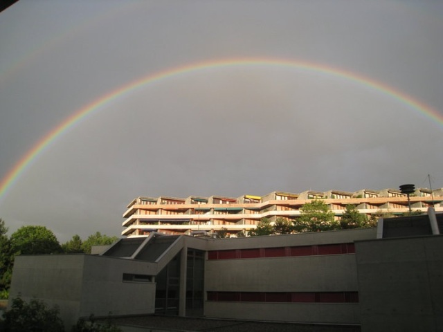 Gva Rainbow
